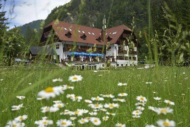 Hotel Plesnik Slovénie