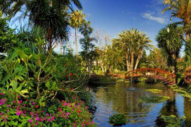 Journées détente Botánico